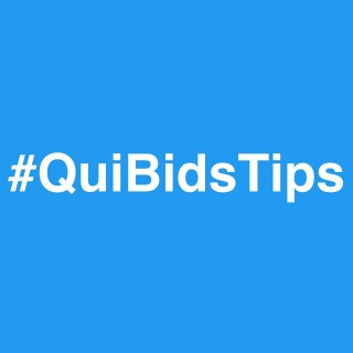 QuiBids Bidding Tips and Strategy for New QuiBidders