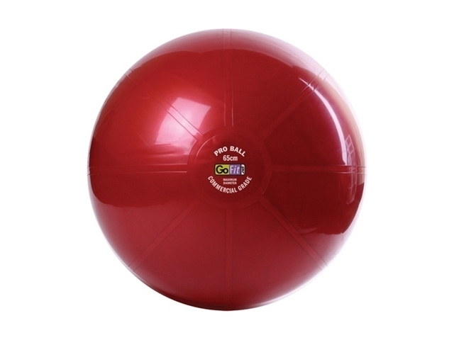 gofit professional grade core stability ball on QuiBids