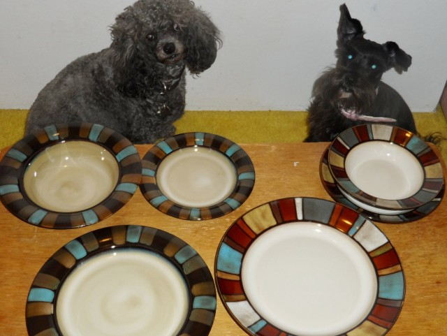 """Sachi and Lexi knows what my dishes are for ""daddy whats for dinner"" Pfaltzgraff Nile and Cayman sets. Won the Nile for $1.55, 11 bids and the Cayman $.60, 13 bids. Know how to get rid of Sachi's Red eyes from flash. Don't know for Lexi's blue. Oh nice coffee cups came w/ the set. But sillywilley dogs don't drink coffee."" - John K."