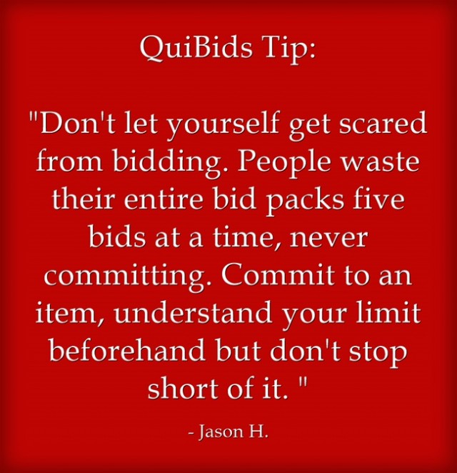 13 Bidding Tips From Real Quibids Customers You Probably