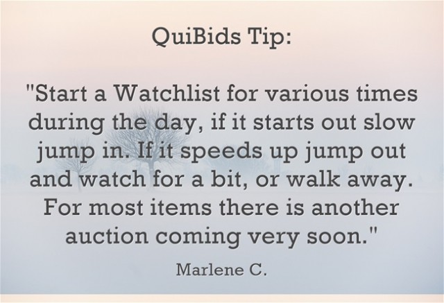 QuiBids Tip