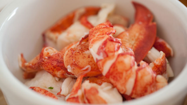 Make The Perfect Lobster Sandwich With These Recipe Ideas | QuiBids Blog