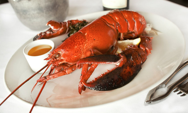 Recipe Roundup - Lobster Edition