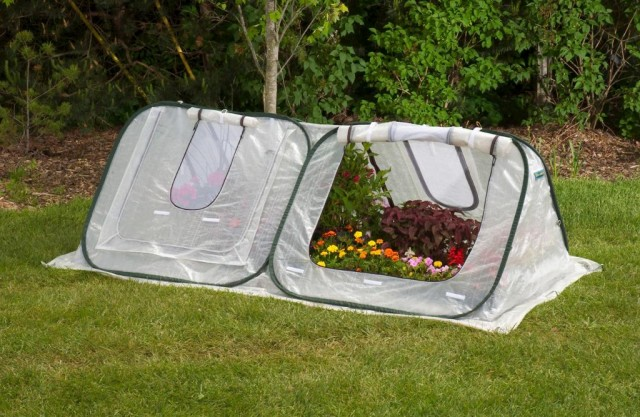Pop Up Portable Greenhouse : Start your first garden with these plants quibids