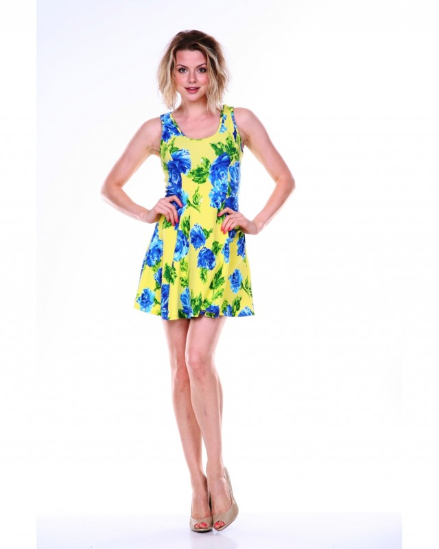 White Mark Printed Fit & Flare Dress - Yellow/Royal