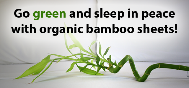 Go green and sleep in peace with organic bamboo sheets