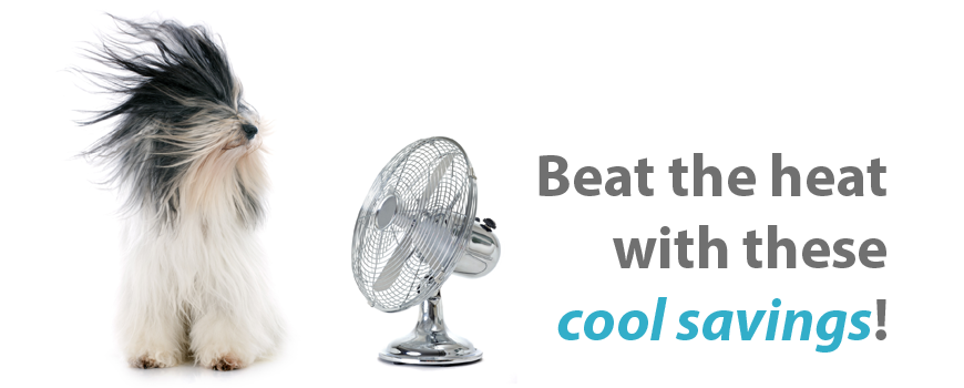 Beat the heat with these cool savings!