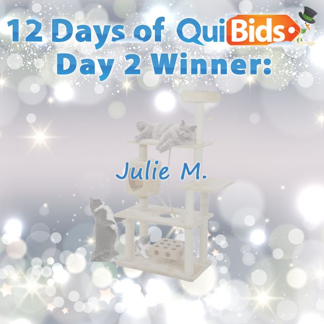 Day 2 Winner - Julie M. - 12 Days of QuiBids