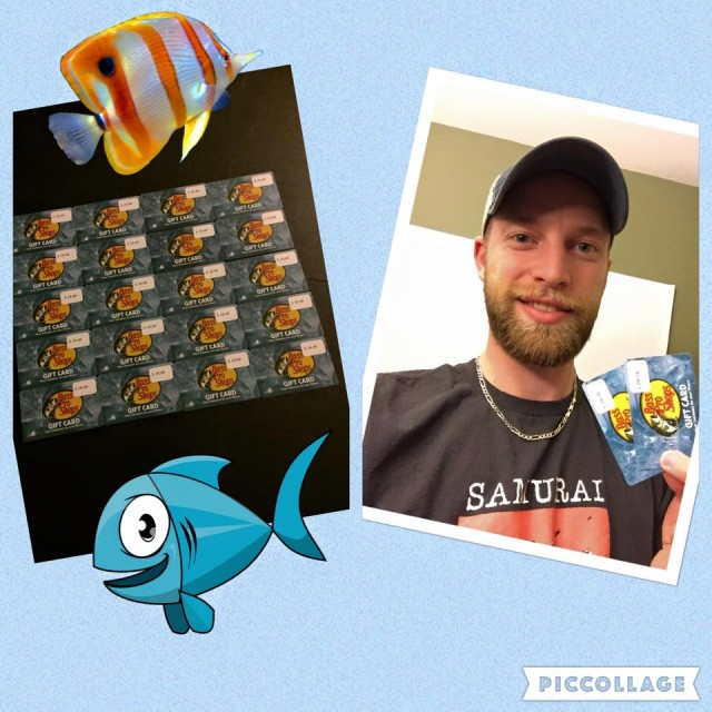 Aaron has had a great run winning gift cards on QuiBids! #QuiBidsWins